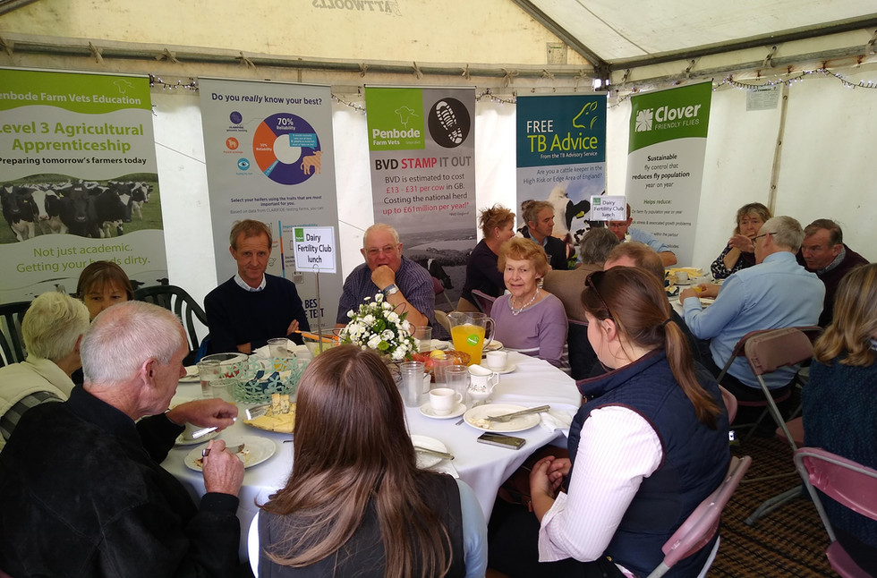 Dairy Fertility Club lunch at the Royal Cornwall Show