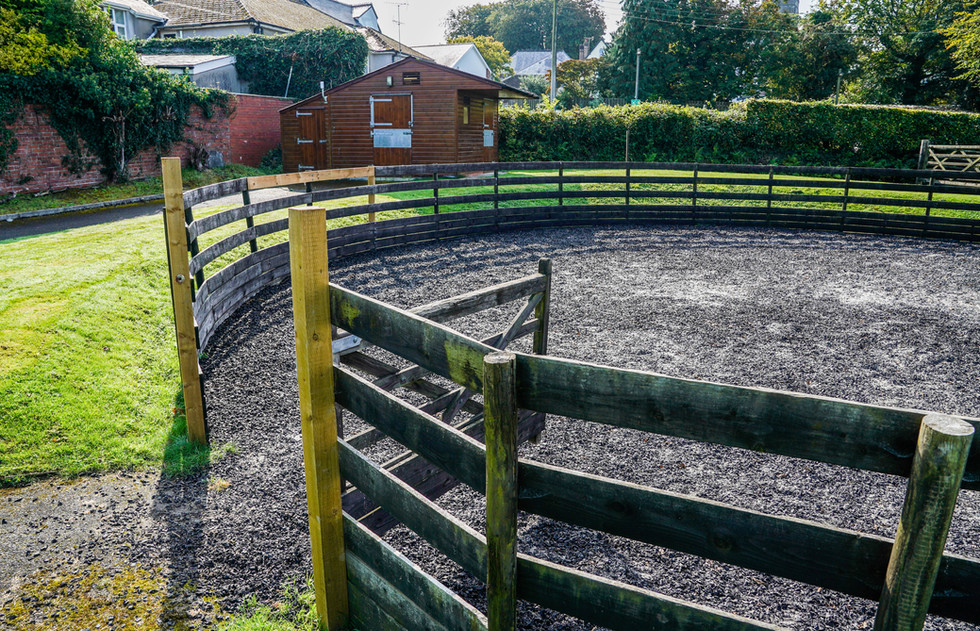 Soft lunging area and isolation box