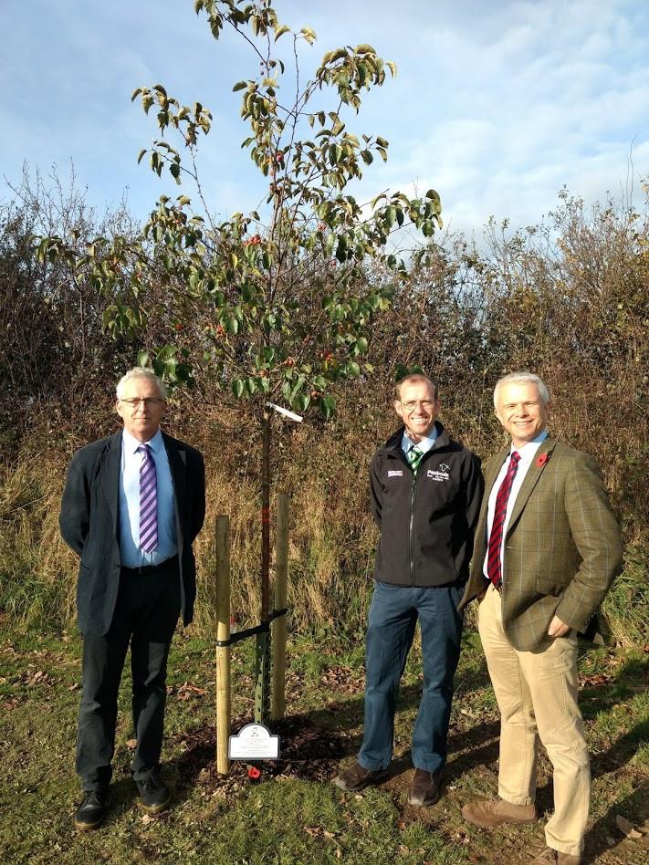 Penbode Vets sponsored a WW1 centenary commemoration tree