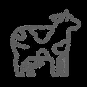 Herd Health Plans & Flock Health Plans