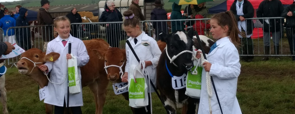 Three Young Handlers at Camelford Show