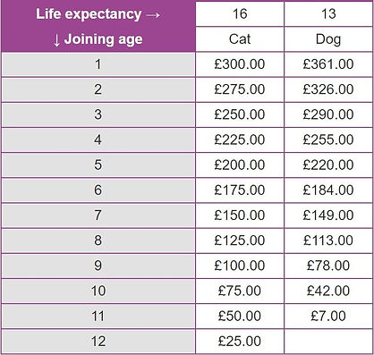 Protect4Life savings chart