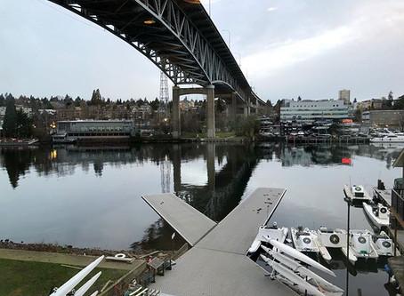 Dock Webcam Back up