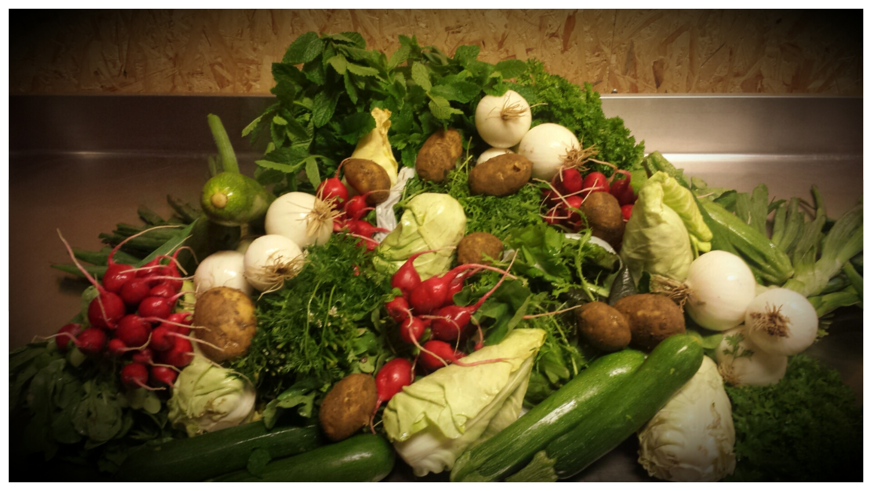 Légumes SARTHOIS