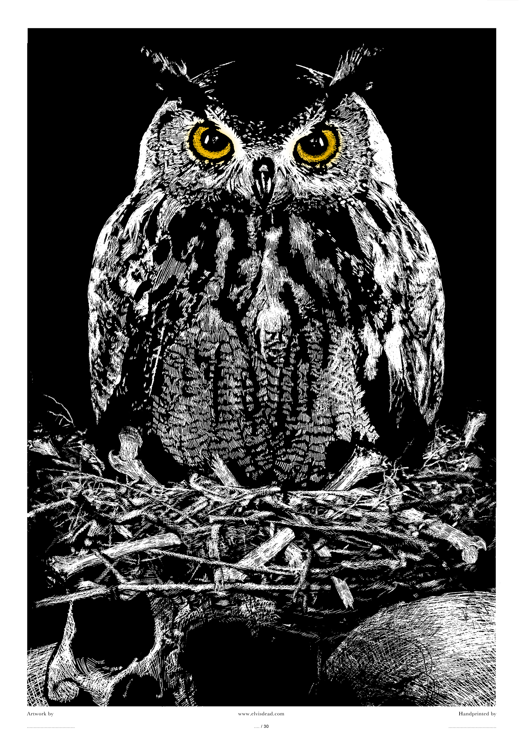 Owl of Death