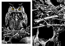 """""""Owl of Death"""""""