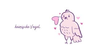 heimische Vögel -  ein Quizz