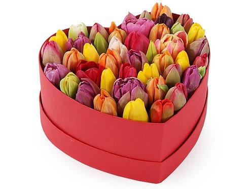 51 Тюльпан в малой коробке-сердце, разноцветный микс