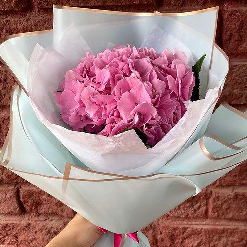 Розовая гортензия в оформлении