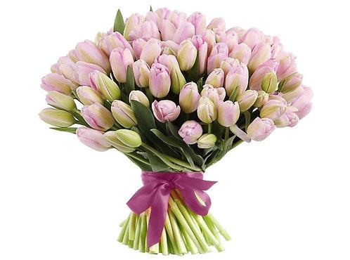 101 Тюльпан, нежно-розовый