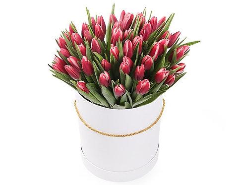 51 Тюльпан в шляпной коробке, алый
