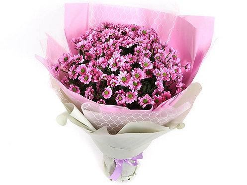 19 Кустовых хризантем
