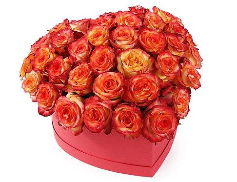 47 Оранжевых роз в малой коробке-сердце