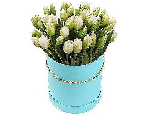 51 Тюльпан в шляпной коробке, белый