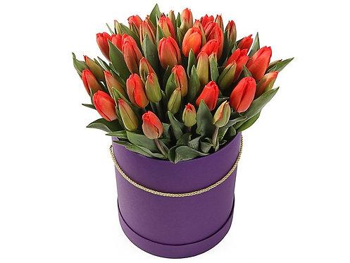 51 Тюльпан в шляпной коробке, красный