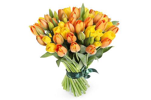 51 Тюльпан, желто-оранжевый