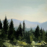 Bitteroot forest, MT plein air. oil 6x8