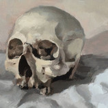 White skull on cloth, still life