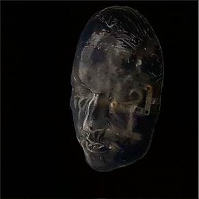 Siren Bird's head probe (2017)