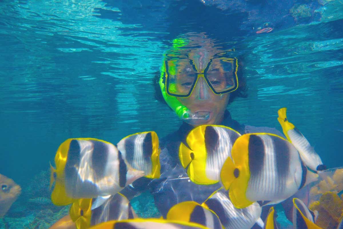 Snorkeling dans l'aquarium