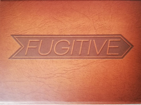 Fugitive - Skellig Games