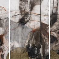 Serie Introspecciones II - tecnica mixta sobre papel - 150 x 330 cm - .JPG