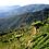 Thumbnail: Colombia Huila Supremo