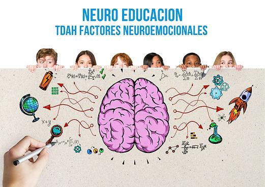 nEURO EDUCACION TDAH FACTORES NEUROEMOCI