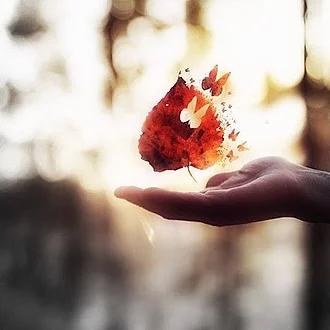 El mejor estado de la vida no es estar enamorados, es estar tranquilos.