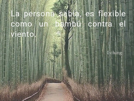 Ser flexible mentalmente es la clave del éxito.