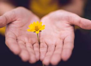El dolor físico y el perdón