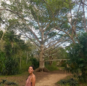 Ceiba Tree on ancient Ek' B'alam Mayan Land - Yucatán, Mexico