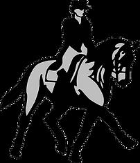 horse transparent.png