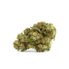 GREEN CUSH
