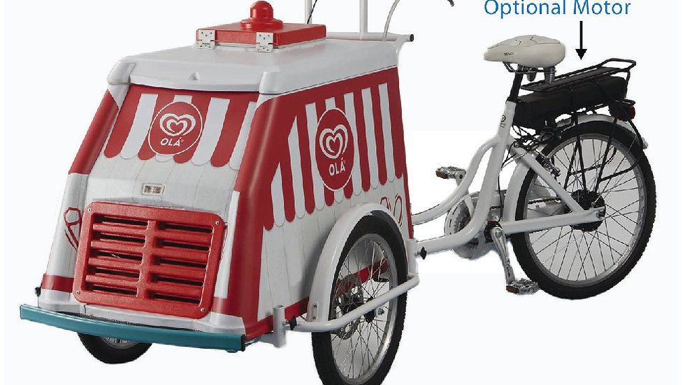FMBC Electric Motor Push Bike