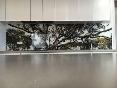 kitchen splashback with imagery