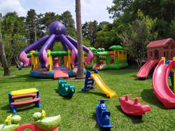 brinquedos da grama e infláveis externo