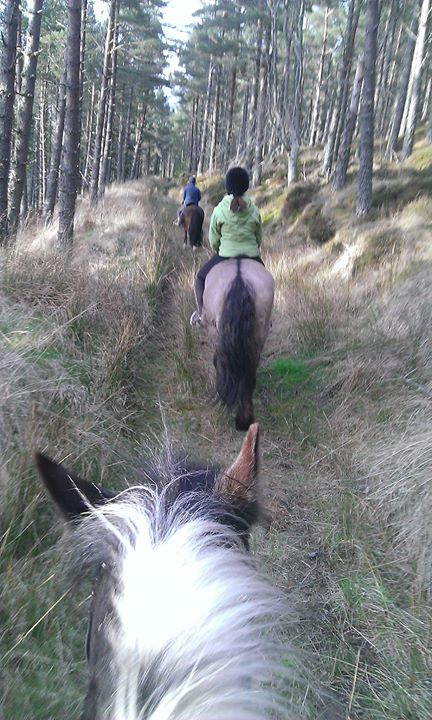 Facebook - Lovely late evening hack and managed to discover yet another new rout