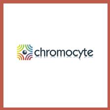 Chromocyte