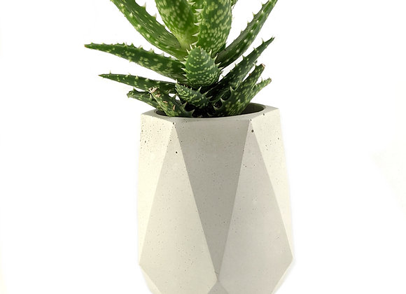 Tall geometric concrete pot