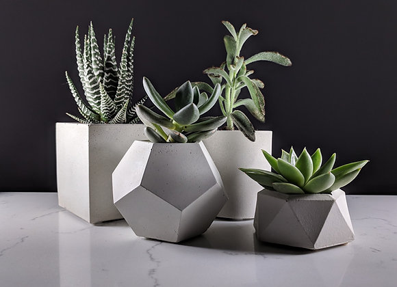 Concrete succulent planter set of 4