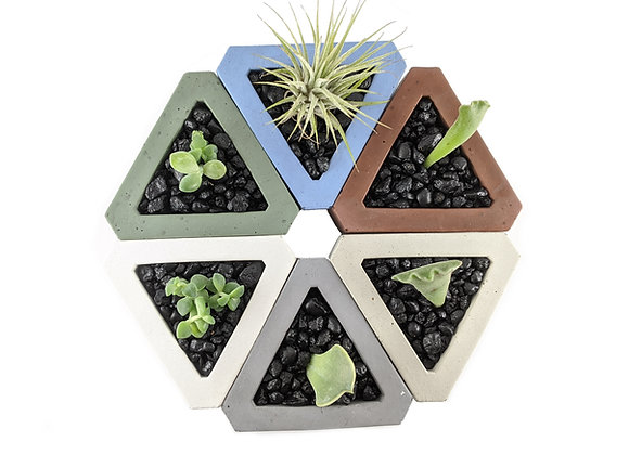 Triangle Concrete succulent planters set of 3 and 6