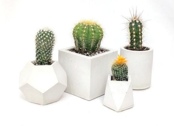 Cube succulent planter set