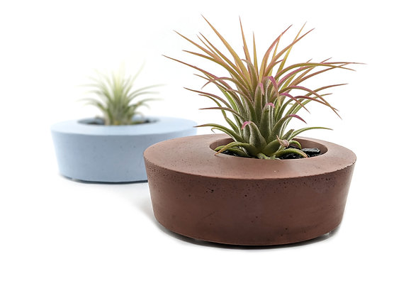 Round and modern concrete planter