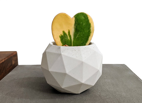 Geodesic Sphere concrete planter