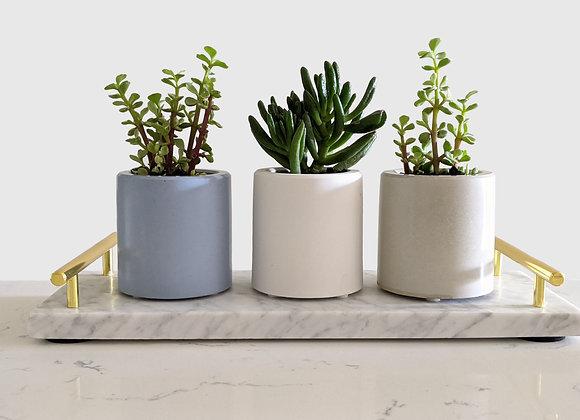 Medium round cylinder planter made of concrete
