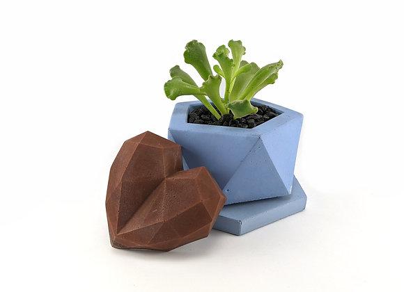 Pentagon Concrete succulent planter