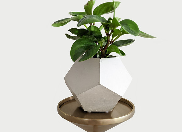 """Big 5"""" dodecahedron geometric concrete planter"""