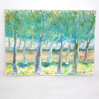 נוף יער