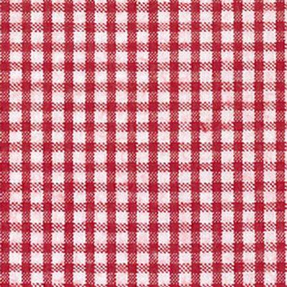 Seersucker Check Fabric - Red